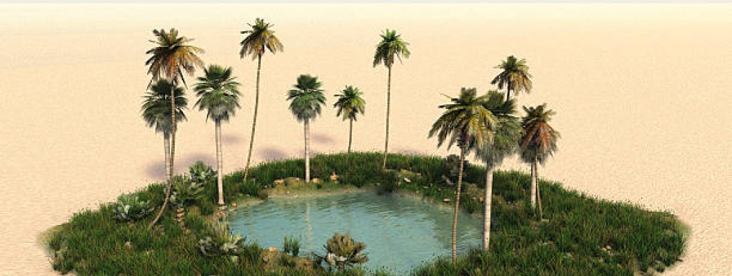 Customized Water Level Indicator for the Ajmer Oasis Hotel